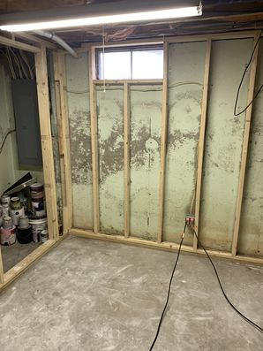 Mold Removal in Meriden, CT (1)