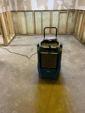 Mold Removal in Meriden, CT (2)