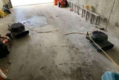 Mold Remediation in Cheshire, CT (2)