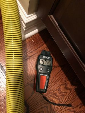 Dry Out Serivces & Mold Removal after Water Damage caused by Appliance Leak in Orange, CT (5)
