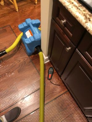 Dry Out Serivces & Mold Removal after Water Damage caused by Appliance Leak in Orange, CT (6)