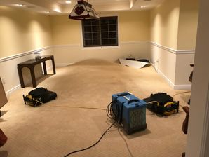 Dry Out Serivces & Mold Removal after Water Damage caused by Appliance Leak in Orange, CT (7)