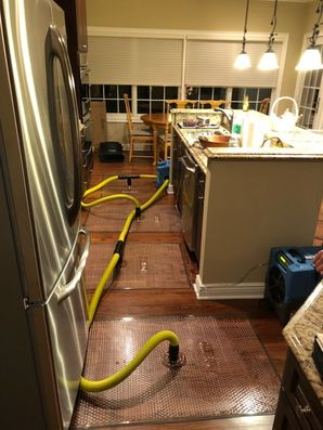 Dry Out Serivces & Mold Removal after Water Damage caused by Appliance Leak in Orange, CT (9)