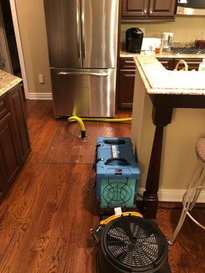 Dry Out Serivces & Mold Removal after Water Damage caused by Appliance Leak in Orange, CT (10)